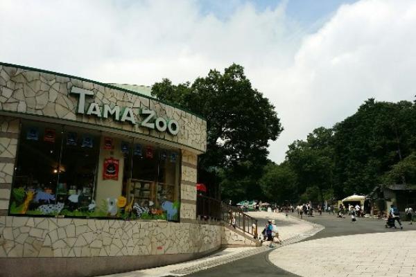 Kebun binatang terbaik Jepang